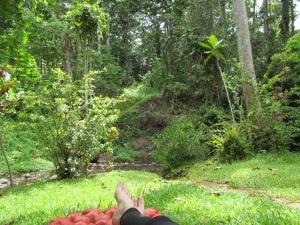 Nanna nap in paradise...