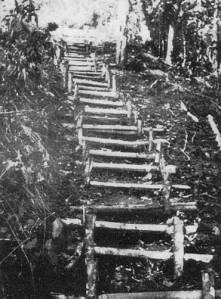 We didn't see any evidence of these stairs on our trek, but this is what they looked like back in WW2