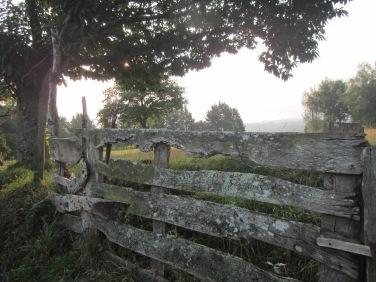 Rural life...